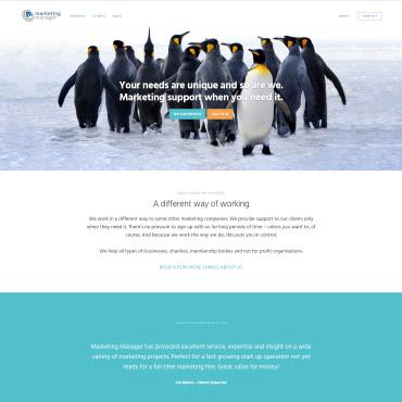 Marketing Manager website screenshot