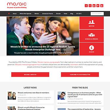 Mosaic website screenshot